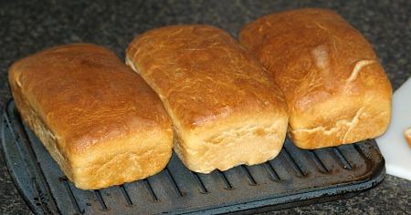White Homemade Bread Recipe