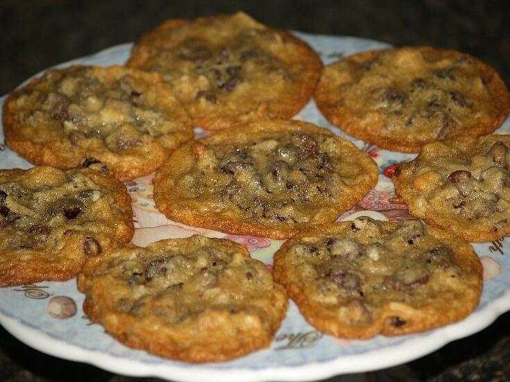 Chocolate Chip Raisin Coconut Cookies