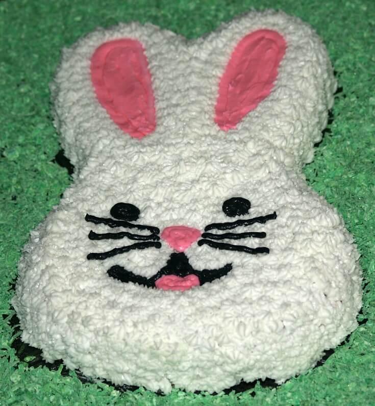 Moist Chocolate Bunny Cake