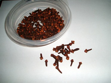 What are Cloves?