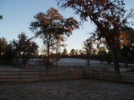 light snow dusted on the pastures calls for cold weather recipes