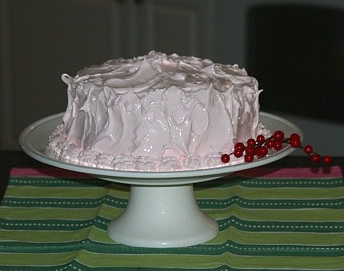 A Dark Chocolate Cake Recipe with Fluffy Peppermint Frosting