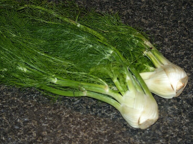How to Cook Fennel Recipes