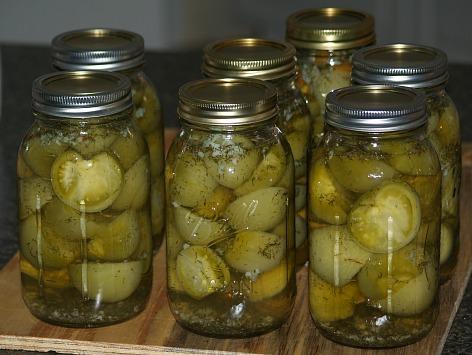 Garlic Dill Green Tomatoes Recipe