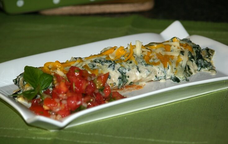 Green Chicken Enchiladas Recipe