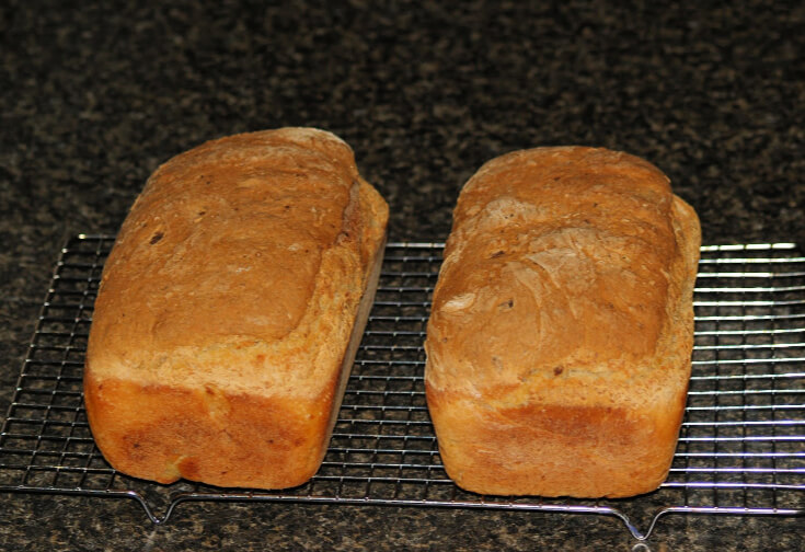Crusty Vegetable Bread Recipe