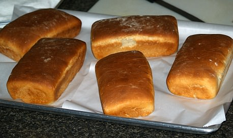 5 Small Loaves Fresh Baked