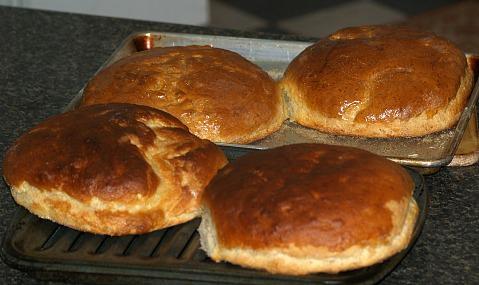 Hillbilly Potato Bread Recipe