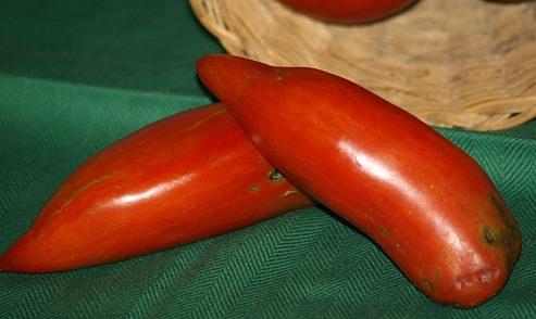 Opalka Tomatoes
