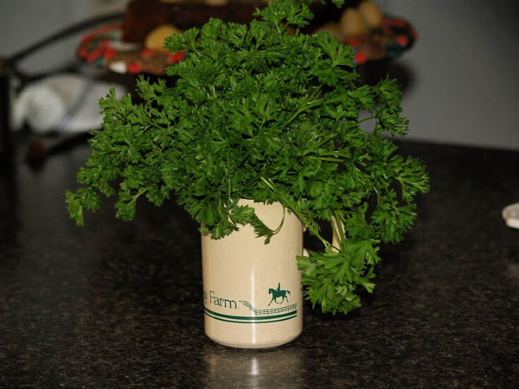 What is Parsley?