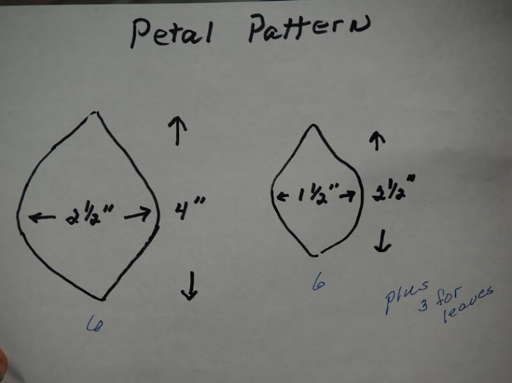 Petal Pattern