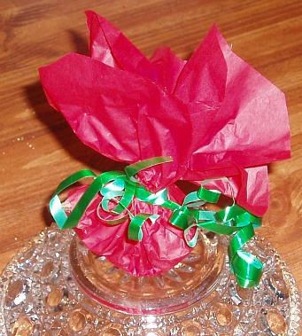 christmas recipe for potpourri
