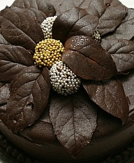 the chocolate touch with leaves