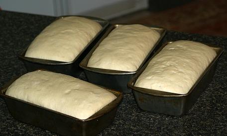 Loaf Pans Double in Bulk
