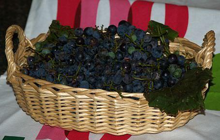 How to Make a Grape Juice Recipe