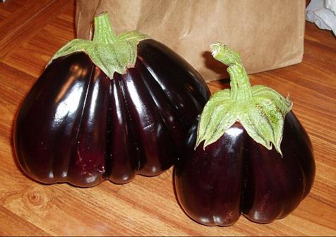 how to make eggplant recipes