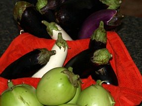How to Make Eggplant Recipes