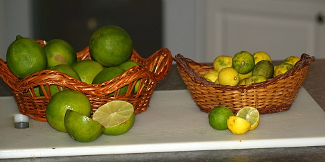 Limes and Key Limes