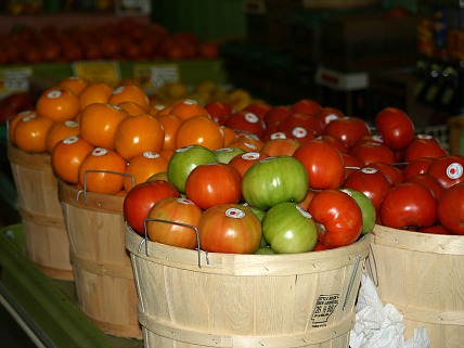 how to make recipes for fresh tomatoes