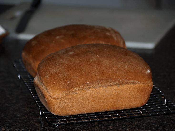 Whole Wheat Yeast Bread Recipe